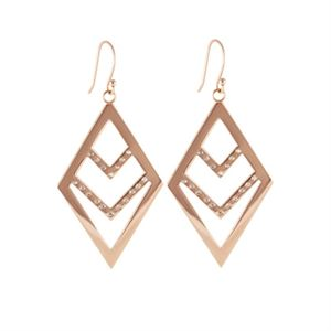 Picture of Rose Gold Chevron Earrings